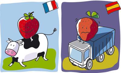Fraises locales/contre fraises importées