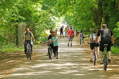 la forêt est accessible depuis les différents quartiers de la ville