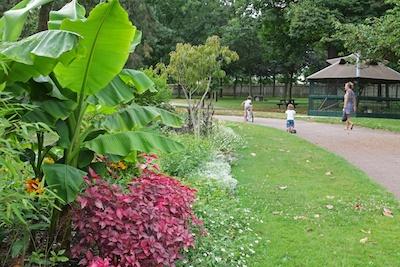 le parc Henri-Barbusse